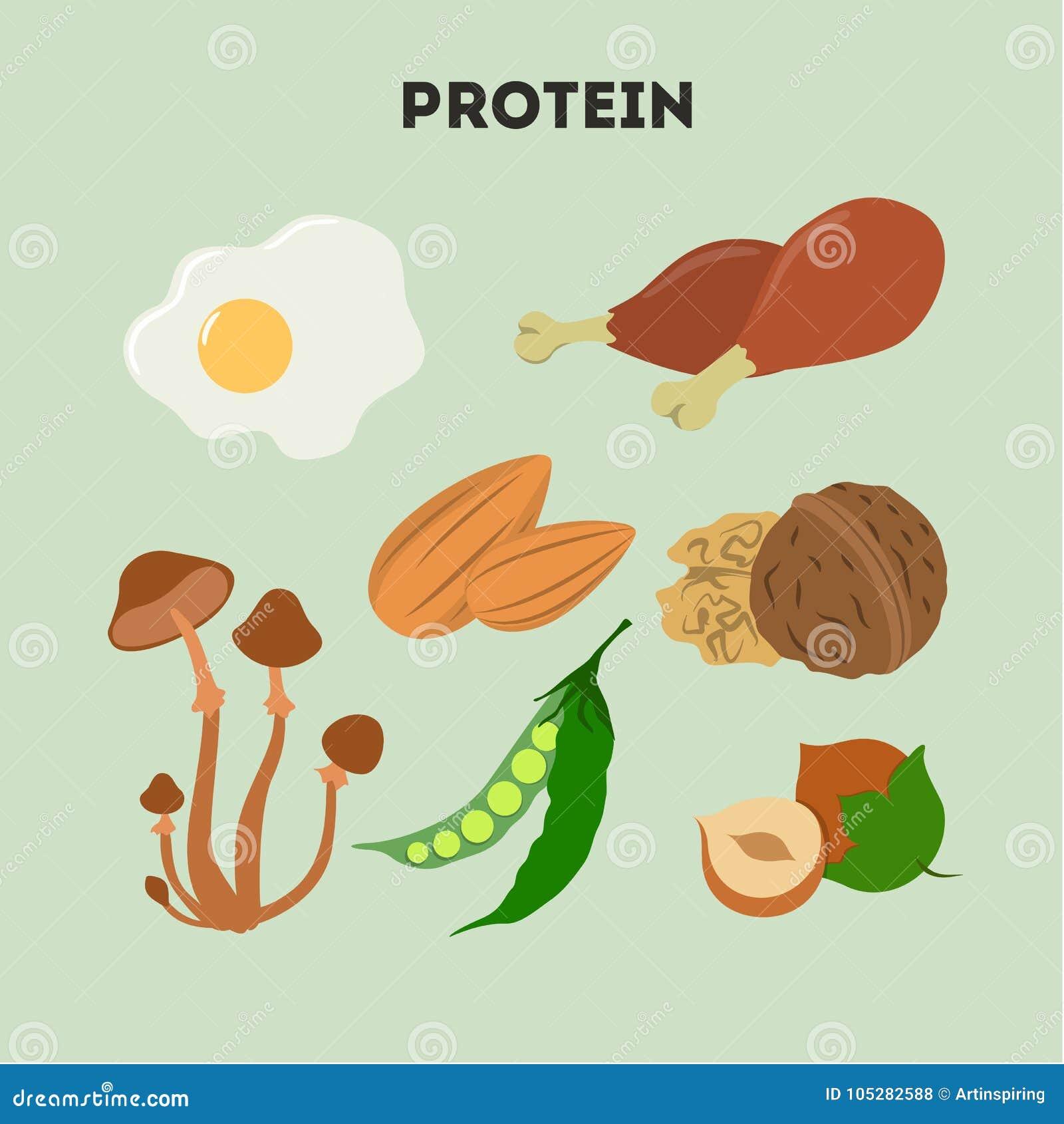 Proteinowy jedzenie set