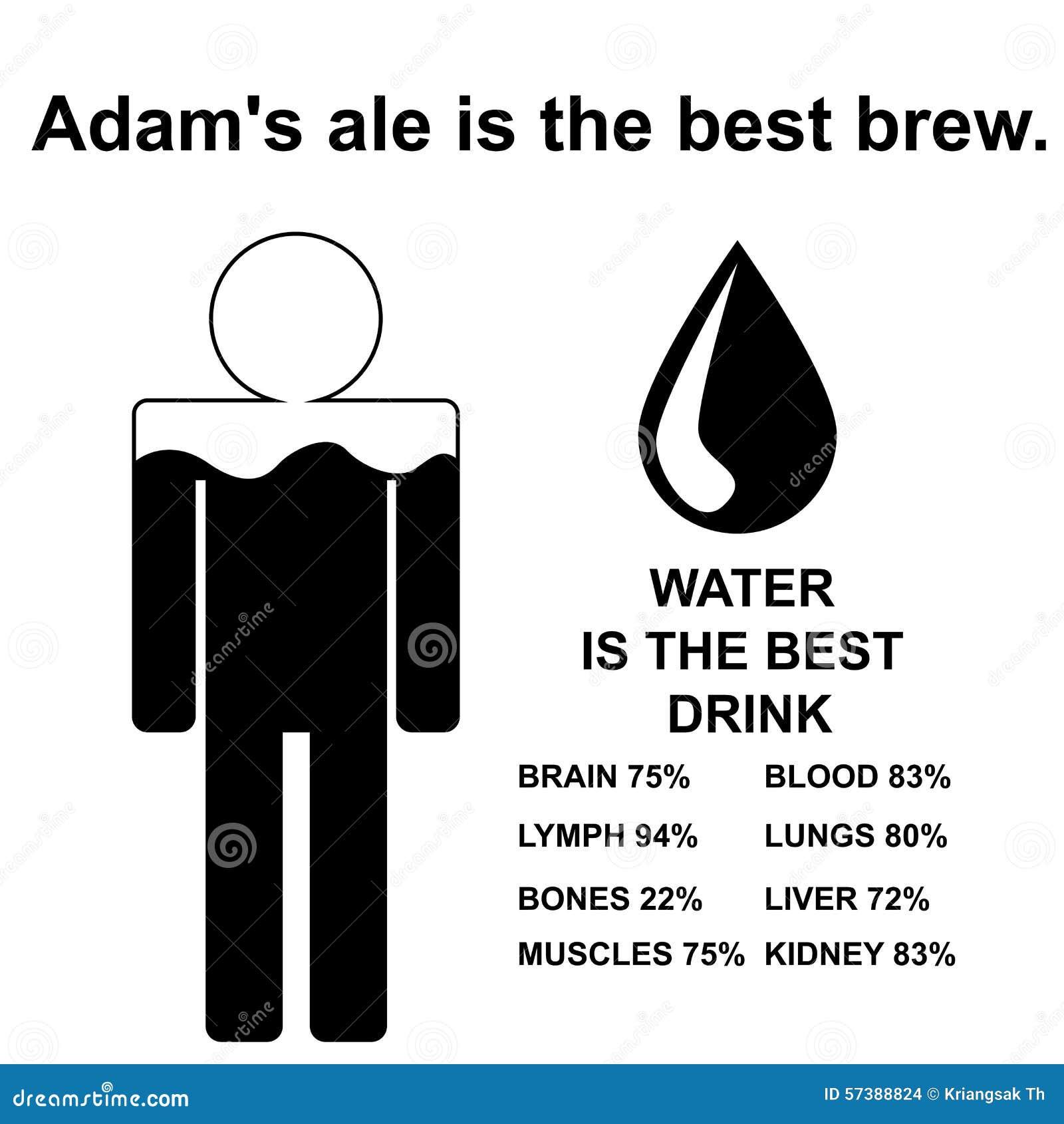 Proverbe Anglais La Biere Anglaise D Adams Est Le Meilleur Brew Illustration Stock Illustration Du Anglaise Meilleur 57388824