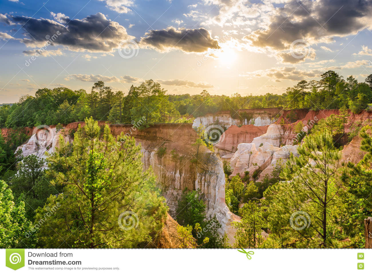 Download Providence Canyon Georgia stock photo. Image of outdoors - 72129234