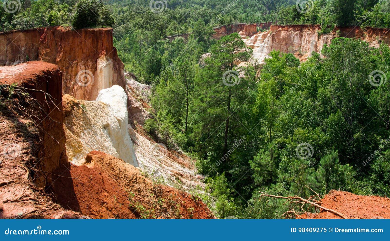 Download Providence Canyon, USA stock image. Image of nature, tourism - 98409275