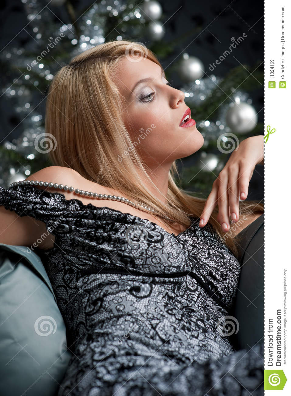 Provocative Woman Posing In Gray Dress Stock Image Image