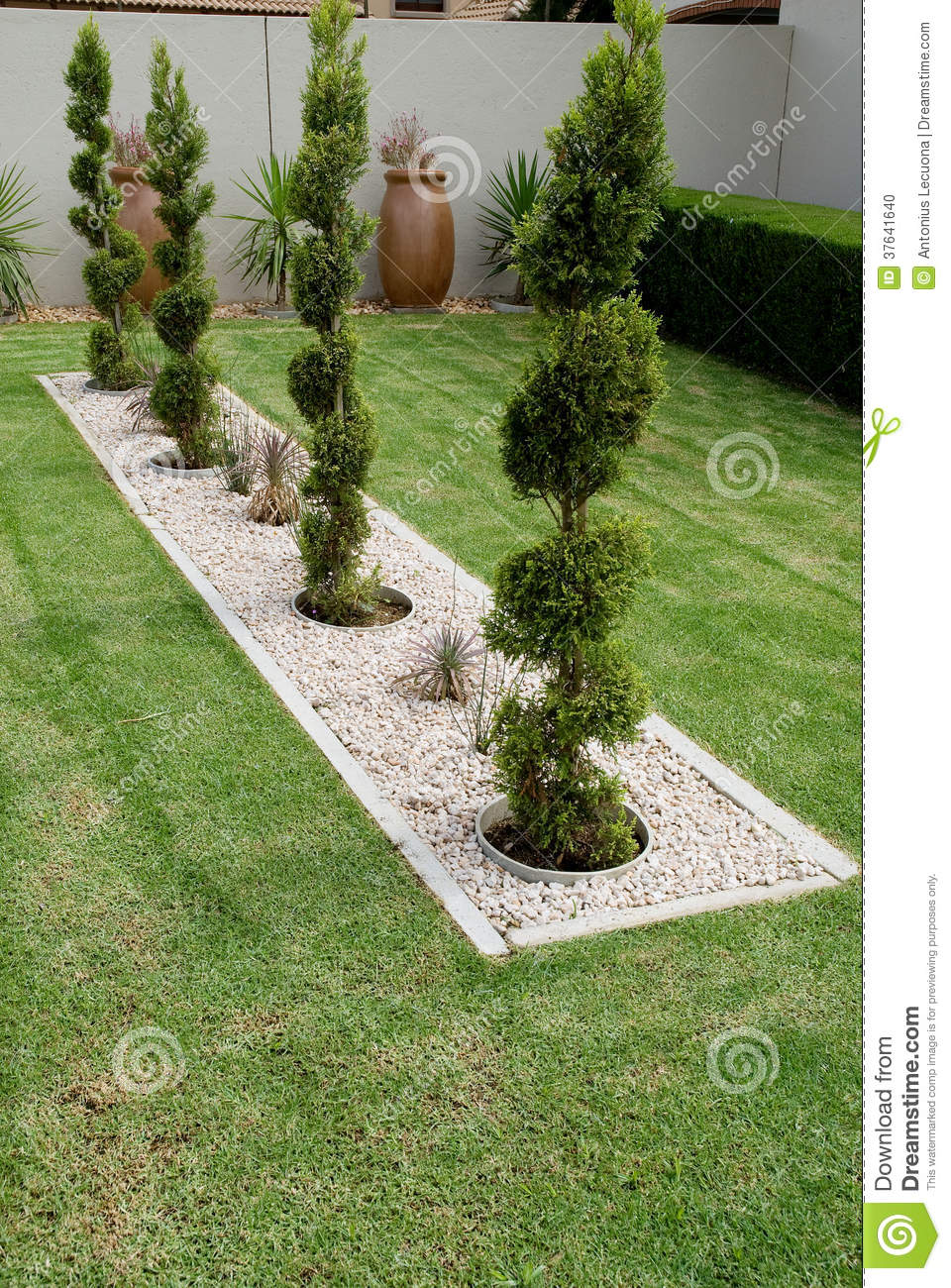 Pruned conifer shrubs stock photo image of feature lawn - Decoracion jardines pequenos ...