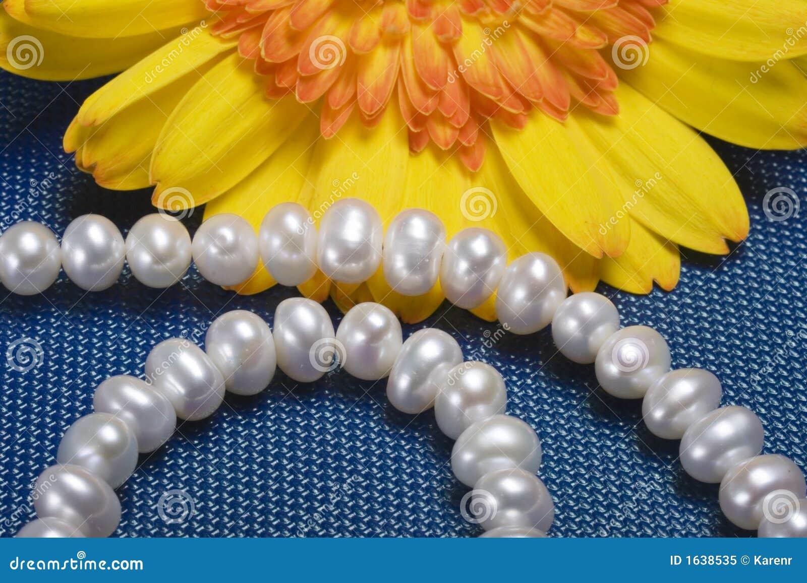 Prydd med pärlor härlig ljus blommahalsbandyellow
