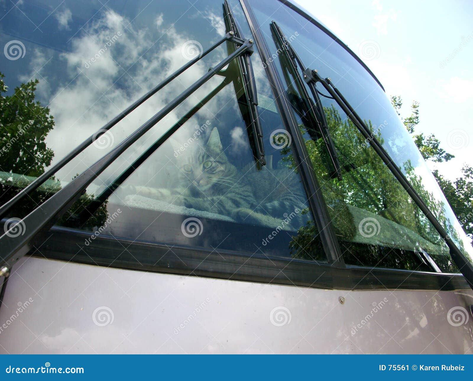 Przednia szyba domowa motorowa