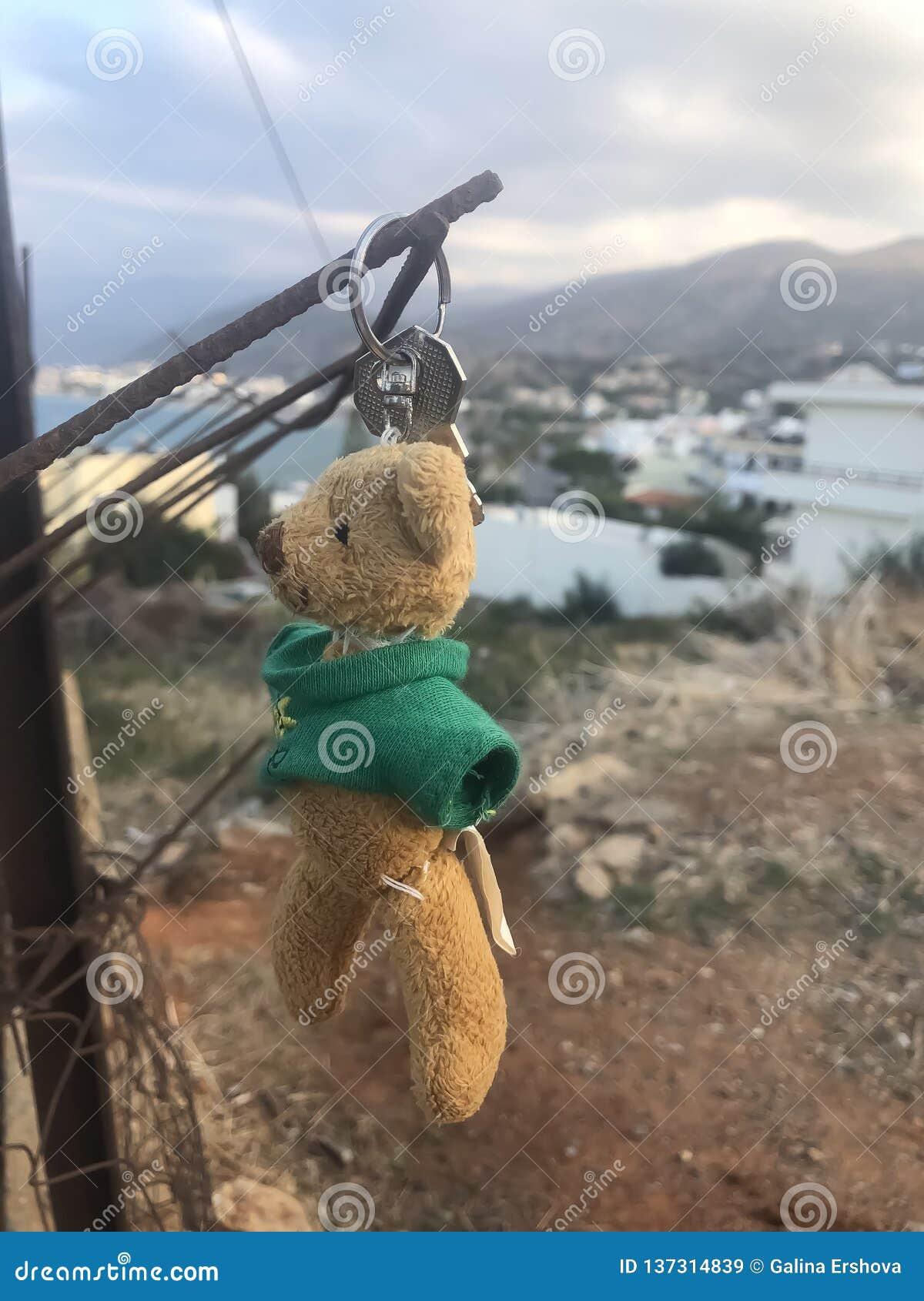 Przegrany niedźwiedzia miś pluszowy