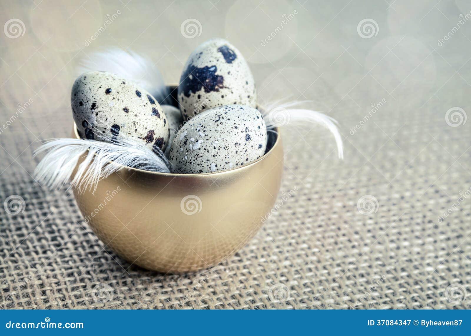 Download Przepiórek jajka obraz stock. Obraz złożonej z przepiórka - 37084347