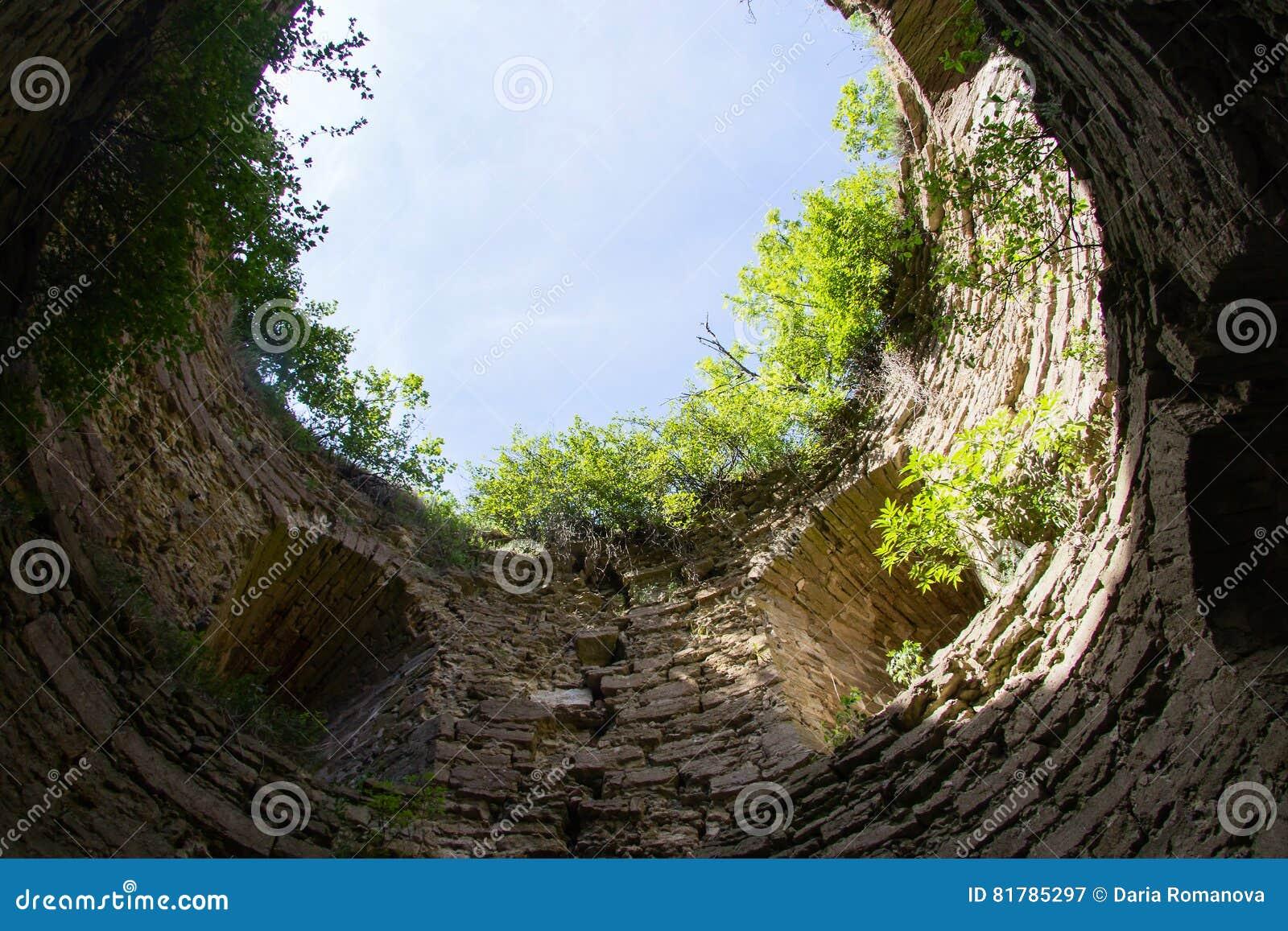 Przerastający z krzakami i starym kamiennym fortecą Koporye