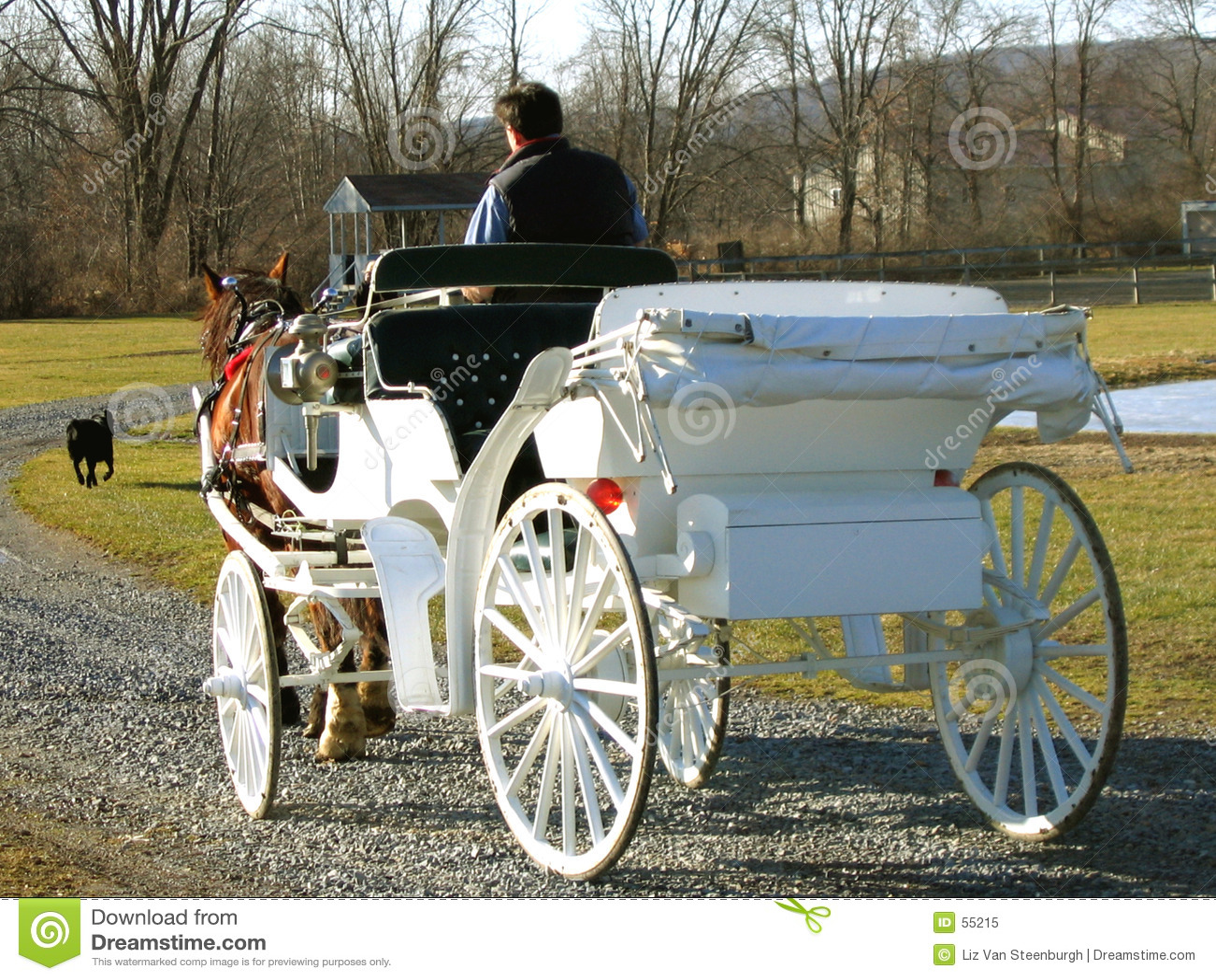 Przewóz przez konia
