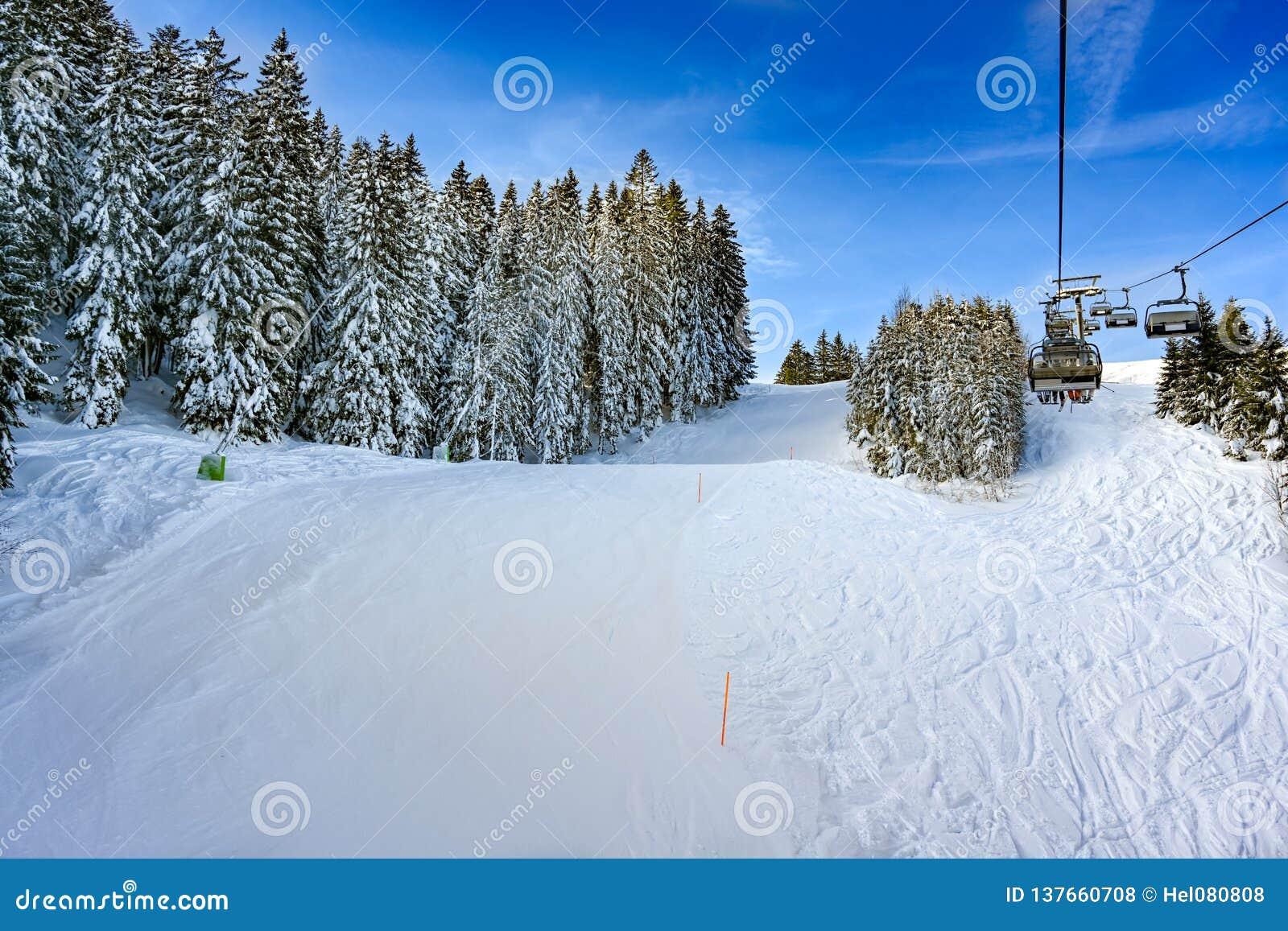 Przygotowany skłon z świeżym śniegiem na jodłach na pogodnym zima dniu, Niemcy
