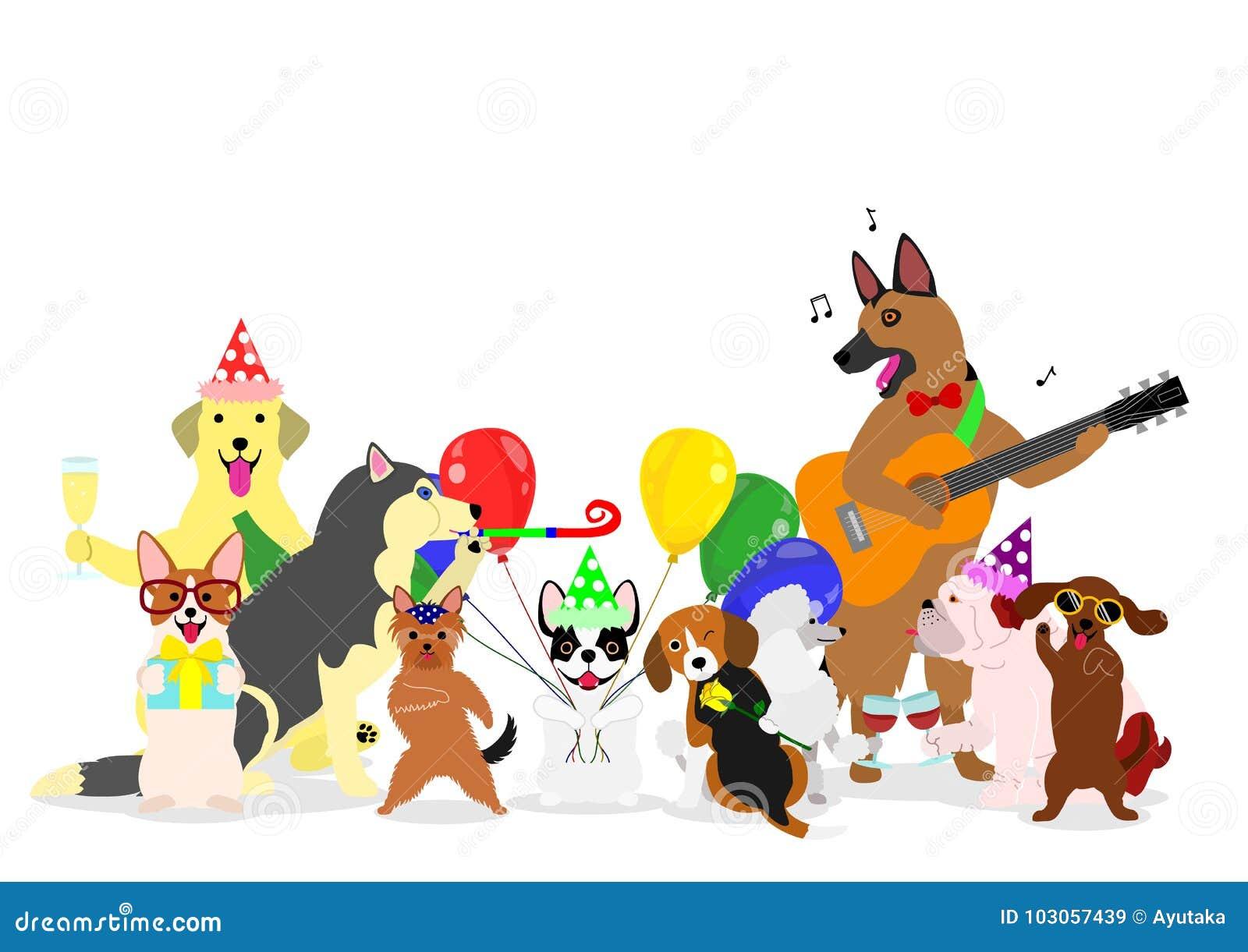 Przyjęcie psów grupa