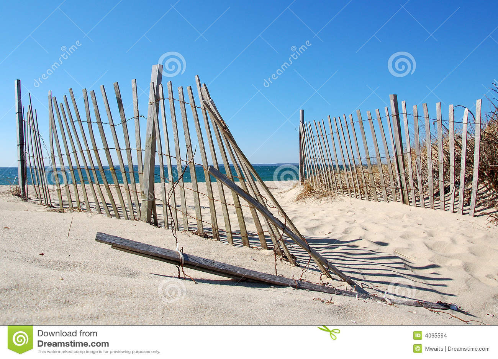 Przylądek dorsza plażowa scena