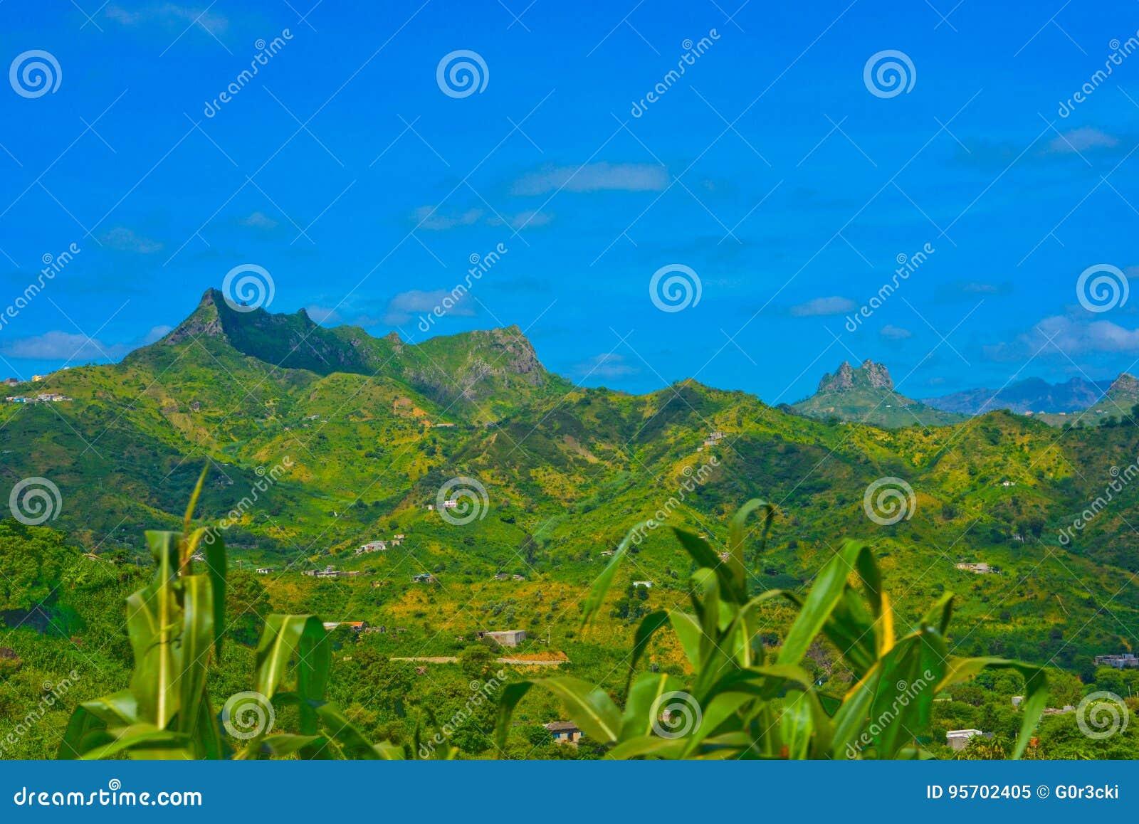 Przylądka Verde Powulkaniczny krajobraz, Kukurydzana roślina, Zieleni Żyźni góra skłony