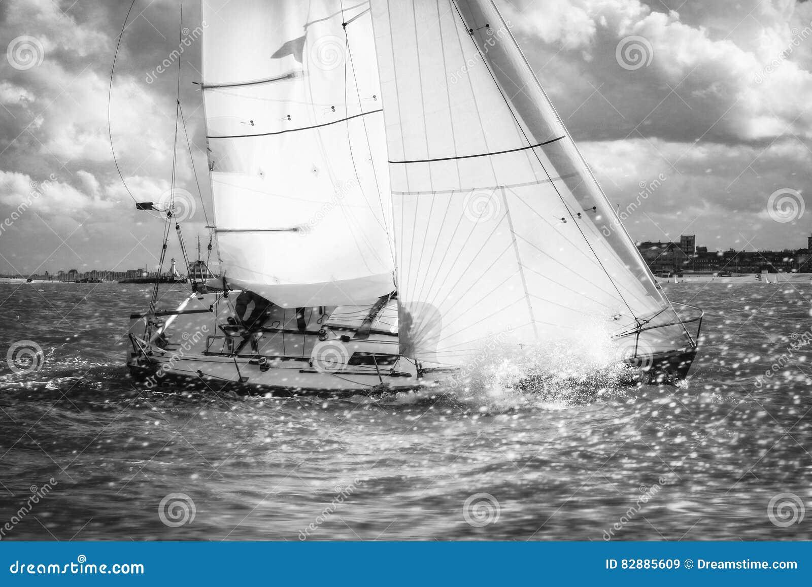 Przyrodnia tona podczas regatta