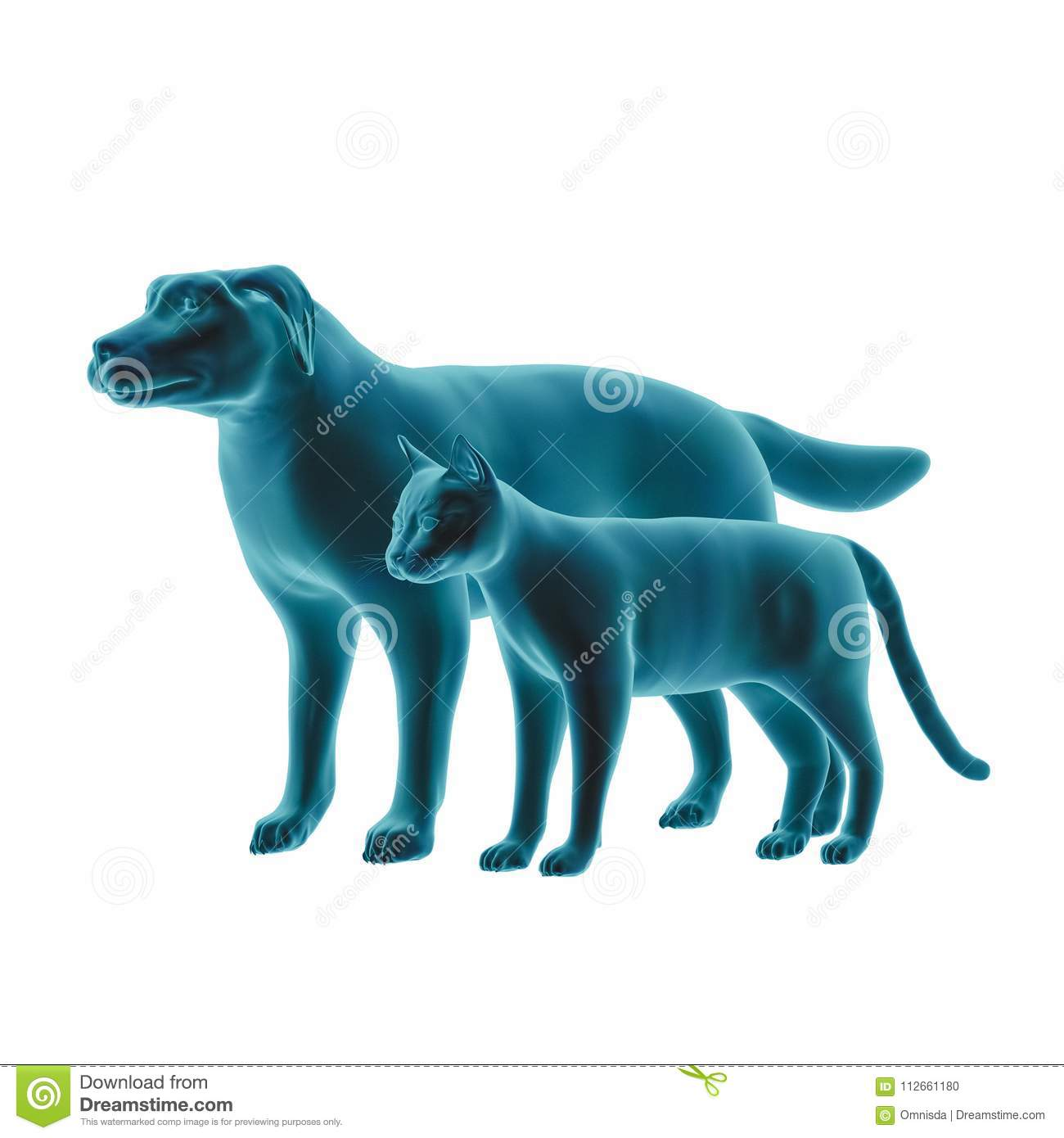 Pseudo X Ray Effect Of A 3d Rendered Cat And Dog