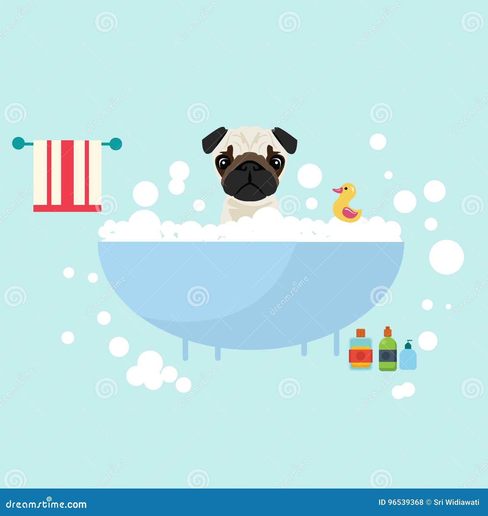 Psi bierze kąpielowy mokry przygotowywać z mydlanym szamponów bąbli zwierzęcia kochankiem