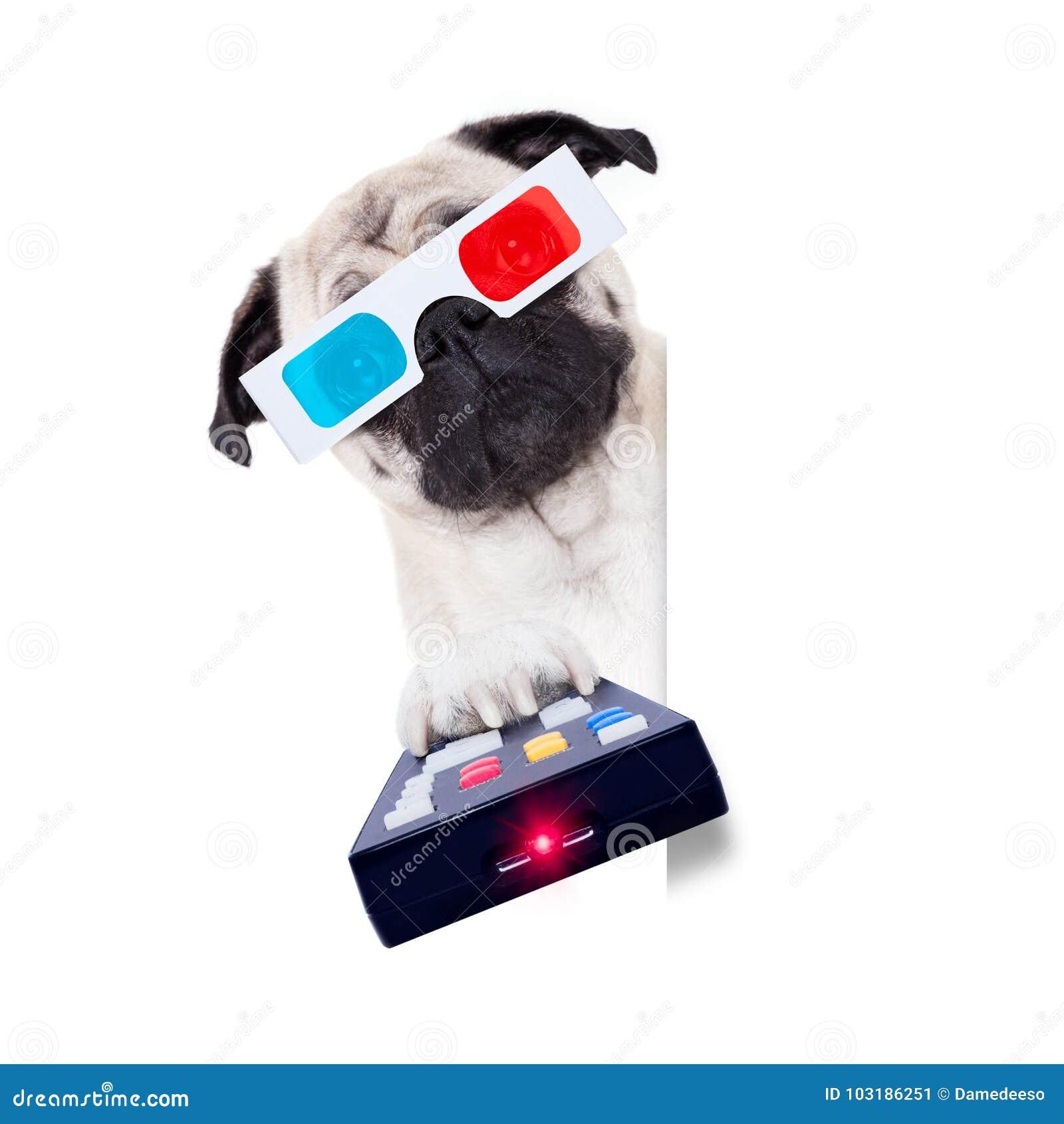 Psi dopatrywanie filmy