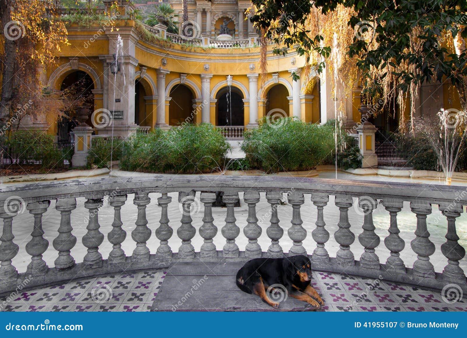 Psi dosypianie w podwórzu park na Santa Lucia wzgórzu, Santi