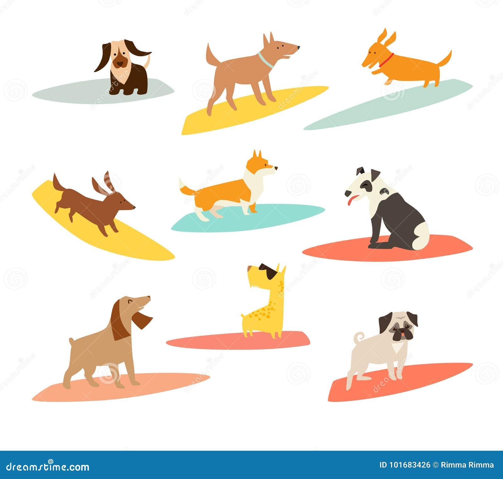 Psi surfingowowie ustawiający, wektorowe kreskówek ilustracje