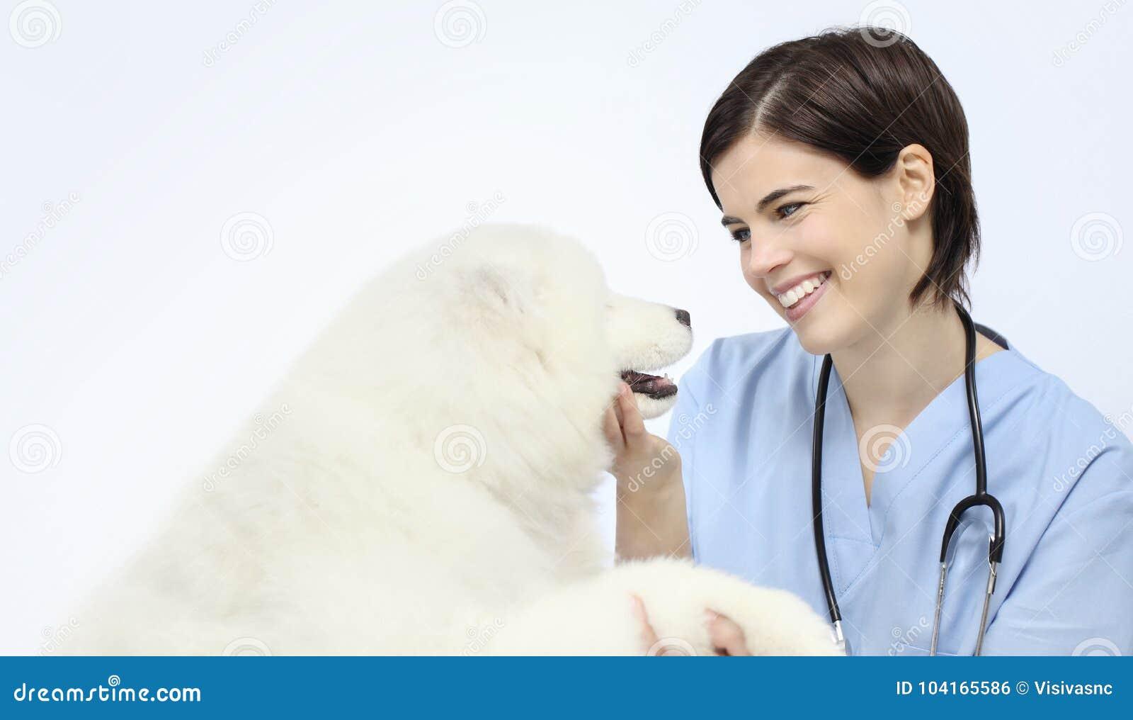 Psi weterynaryjny egzaminacyjny uśmiechnięty weterynarz odizolowywający na whit