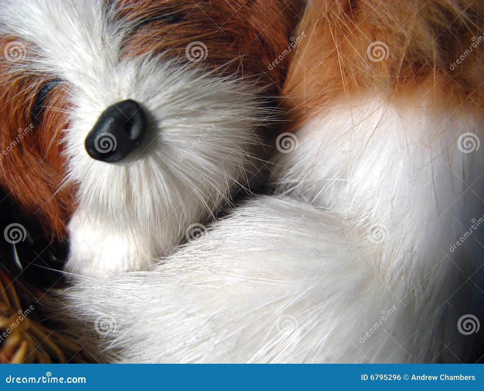 Psia zabawka