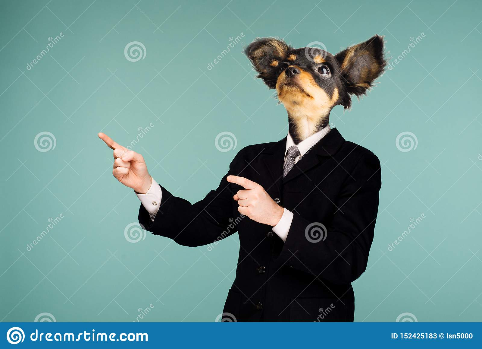 Psychedelic collage combining a man in a suit and a dog`s head. The character looking up and pointing to the side