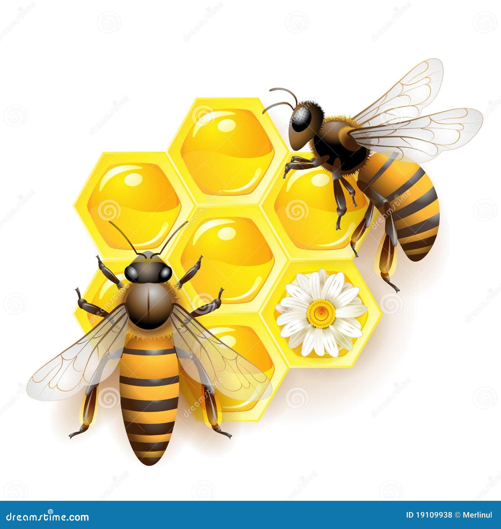Pszczoły dwa