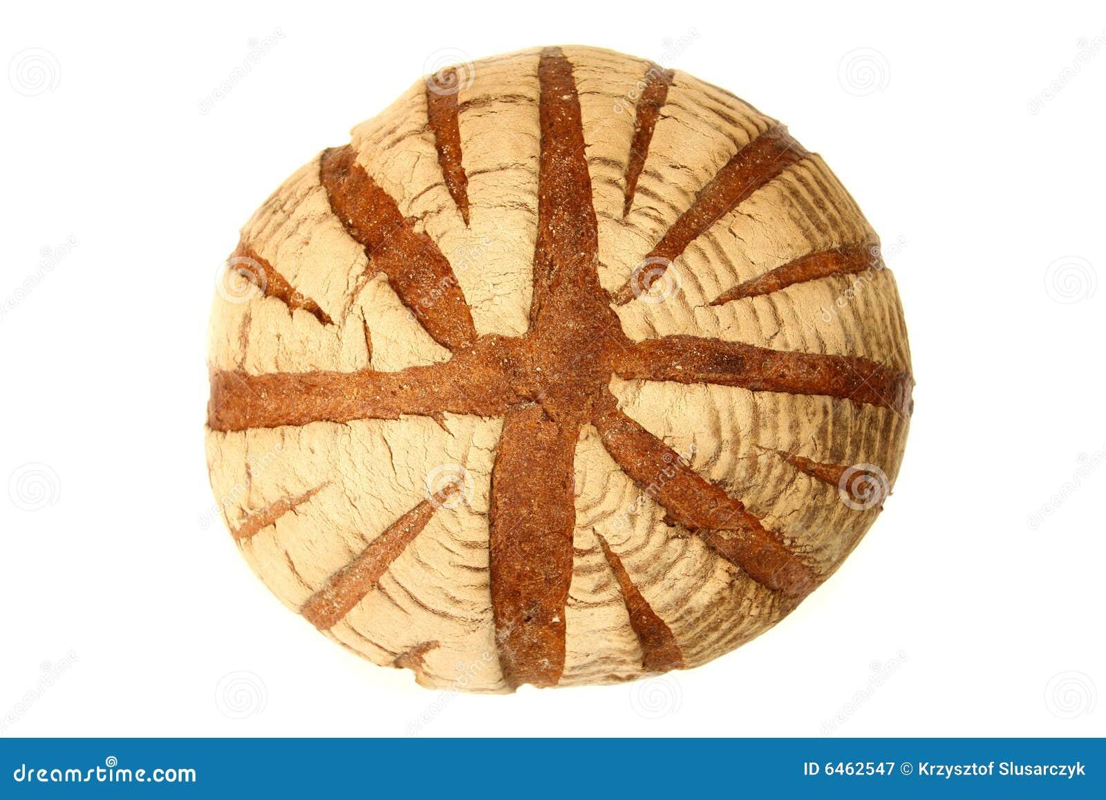 Pszenica chlebowa