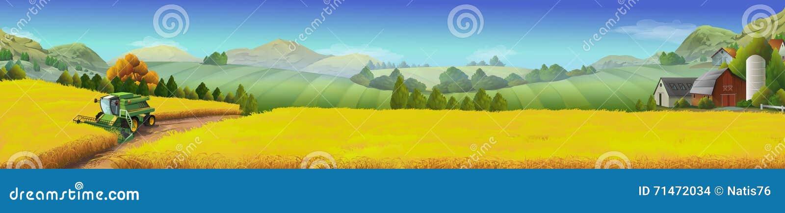 Pszeniczny pole, wiejski krajobraz