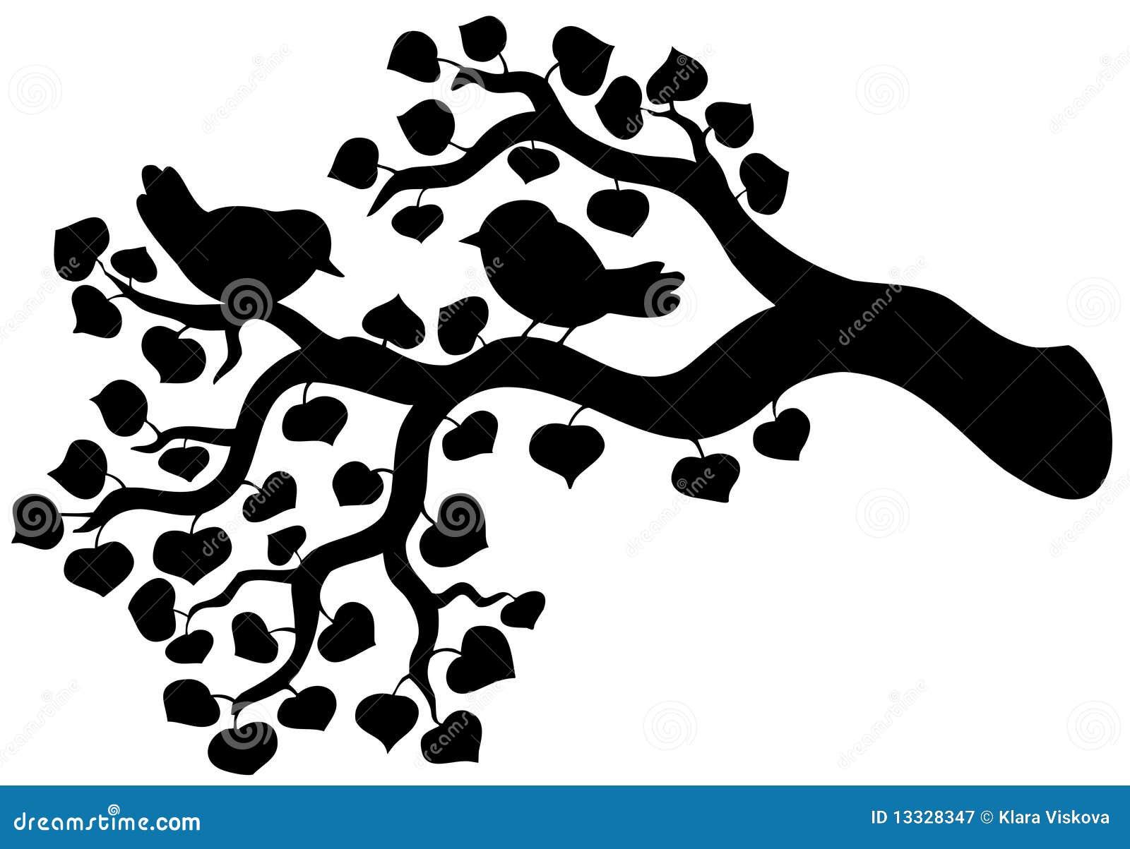 Ptaków gałąź sylwetka