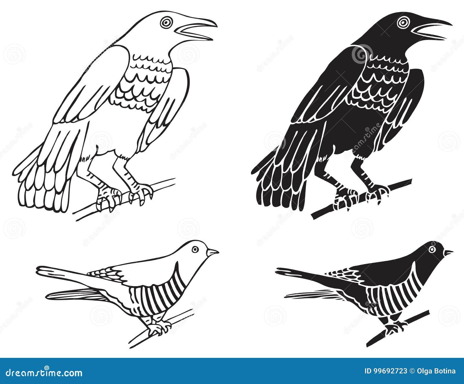 Ptak kukułka i wrony