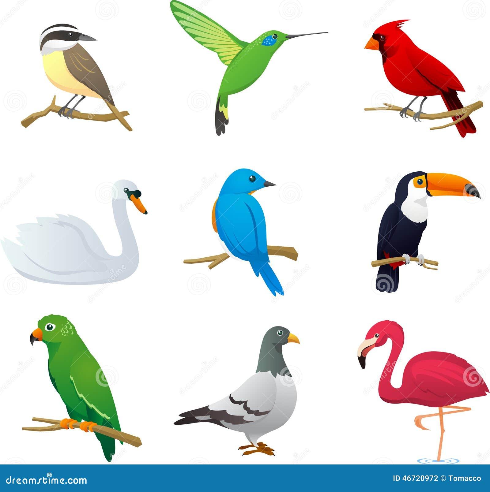 Ptak ustawia 1