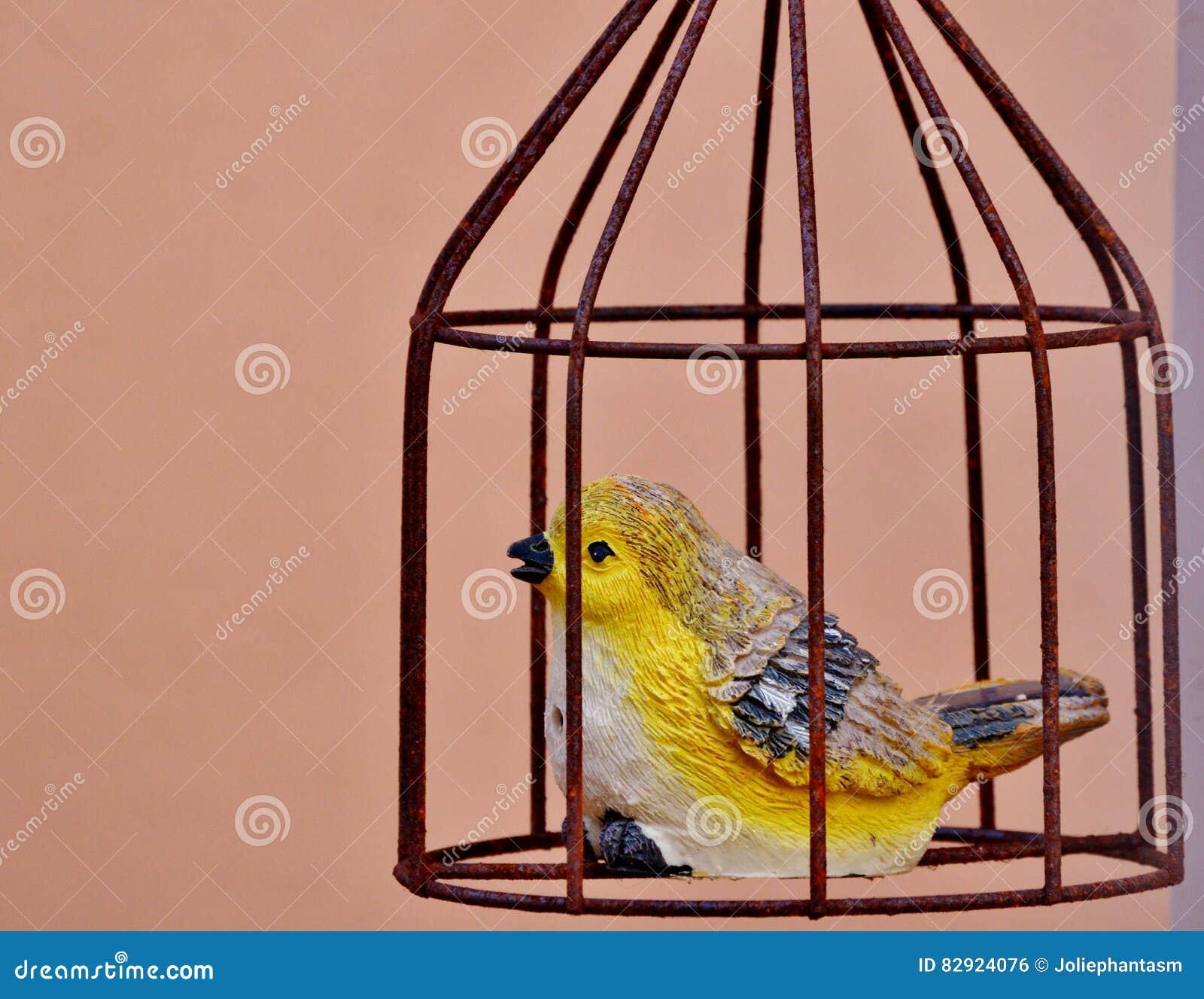 Ptaka i klatki dekoracja