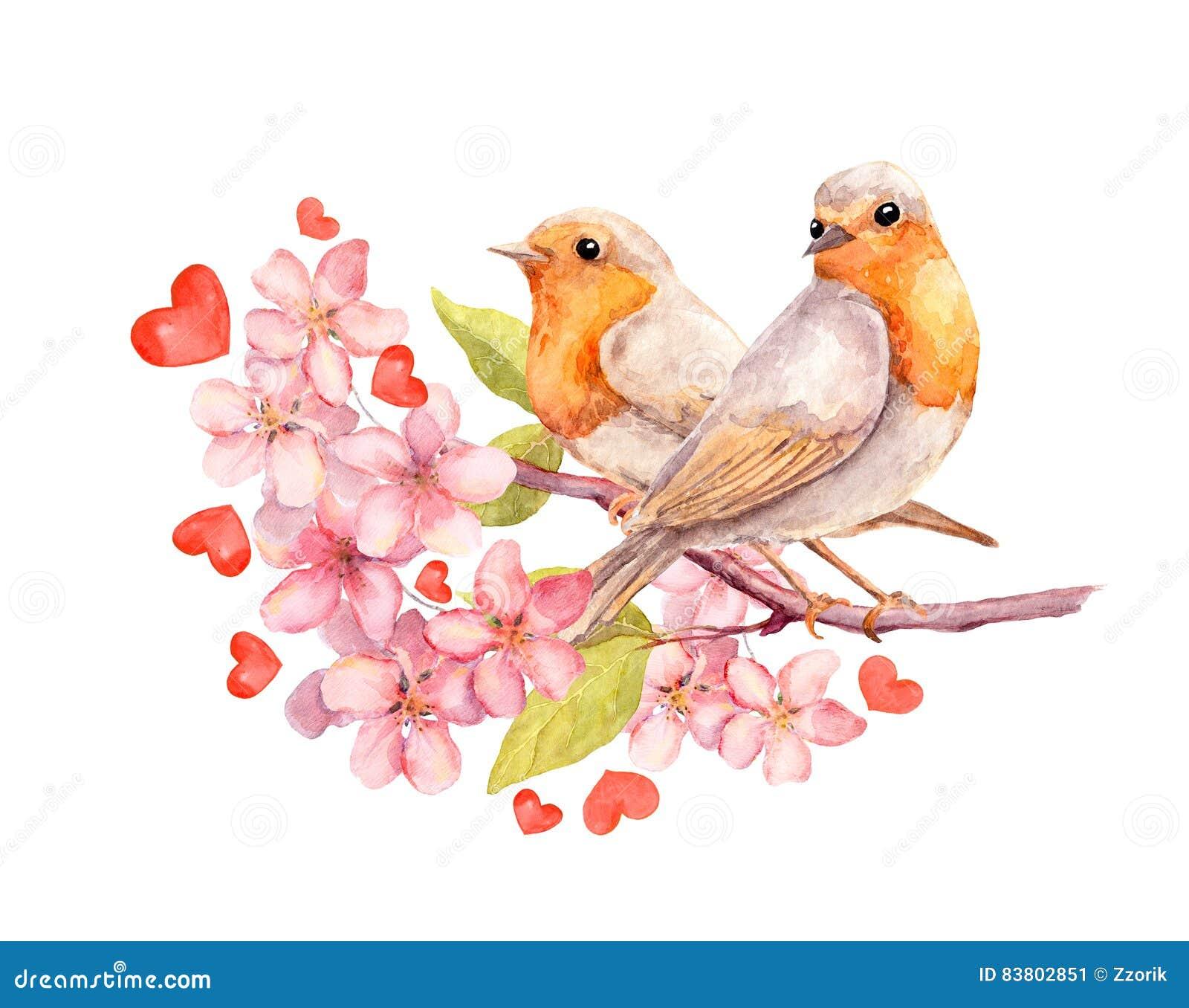 Ptaki na kwitnienie gałąź z kwiatami akwarela