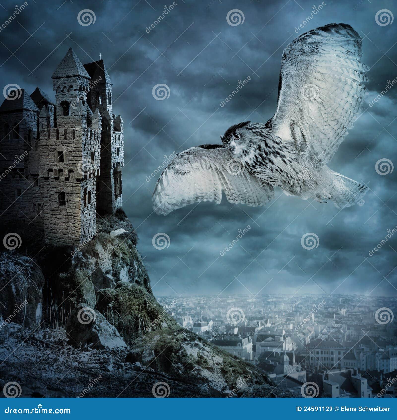 Ptasia latająca sowa