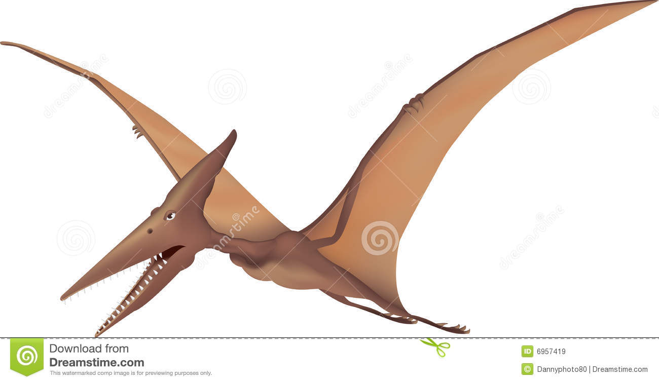 Illustration of a pterodactyl flying on white background.