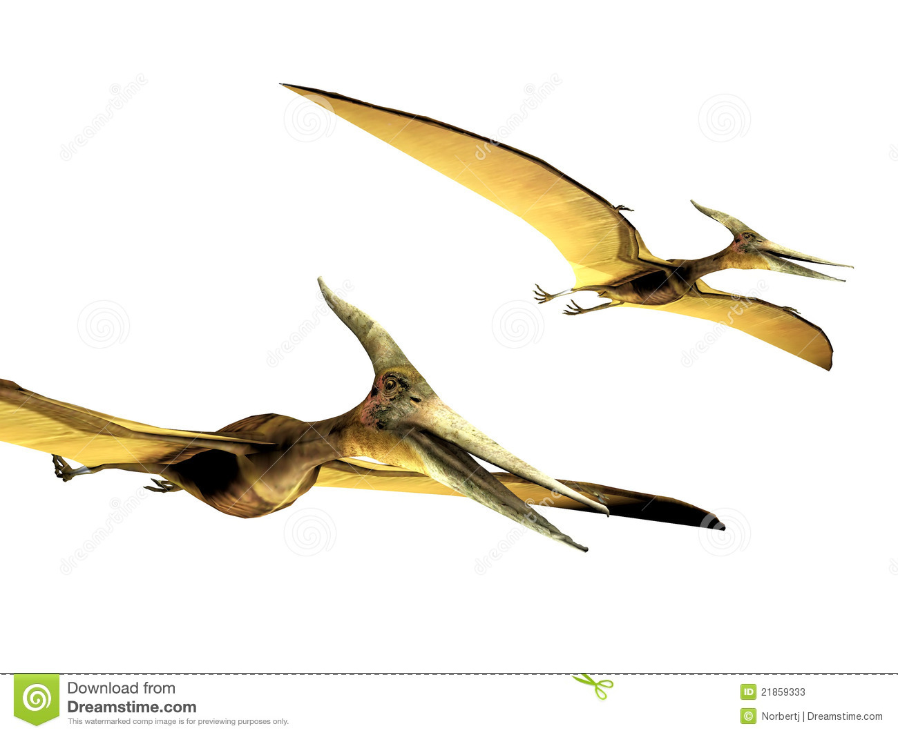 Pterodactyls Stock Photos - Image: 21859333