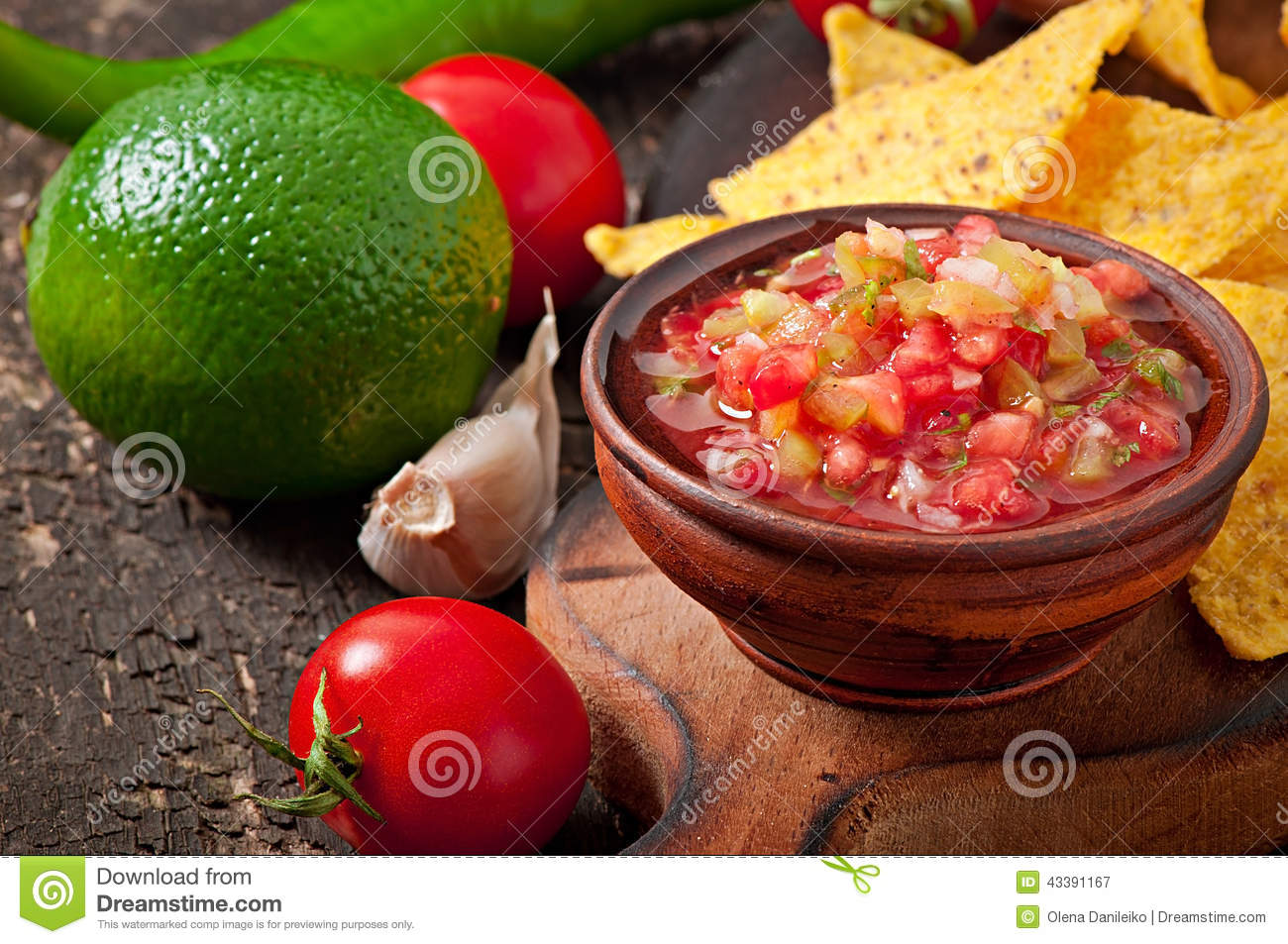Puces de nacho et immersion mexicaines de Salsa