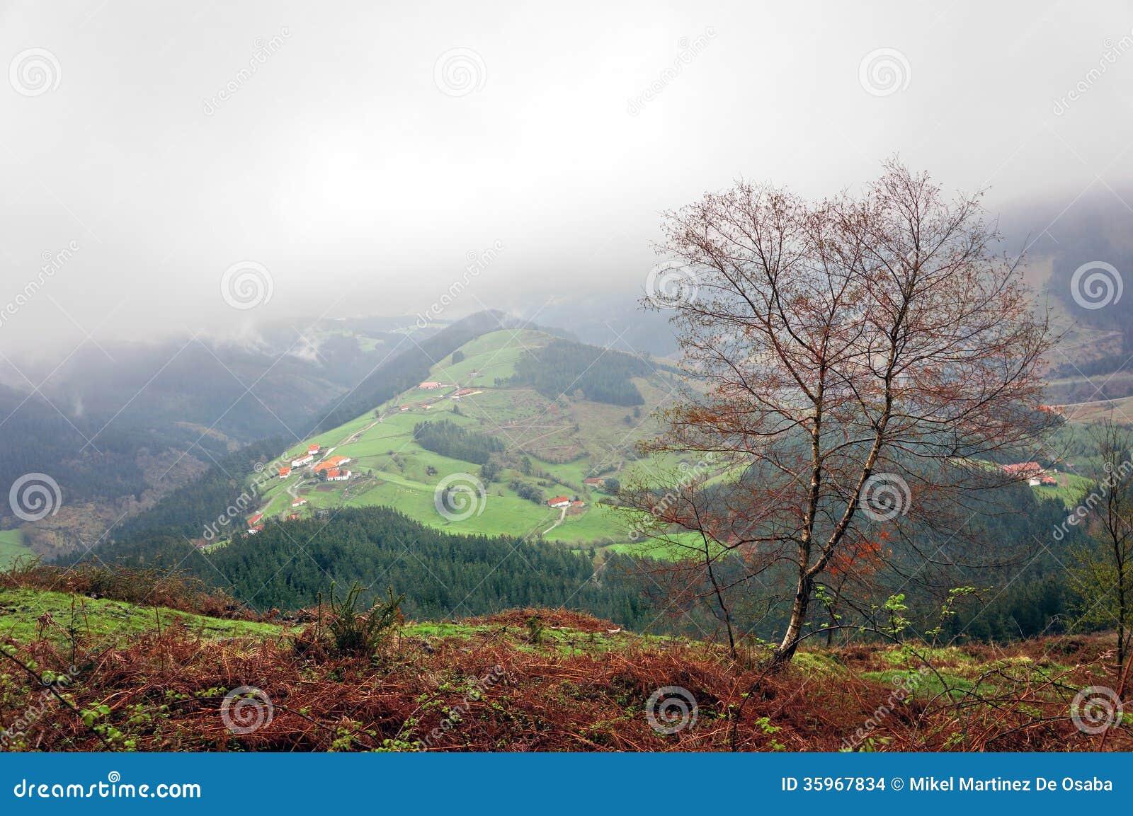 Pueblo del campo con algunas casas de campo basque típicas