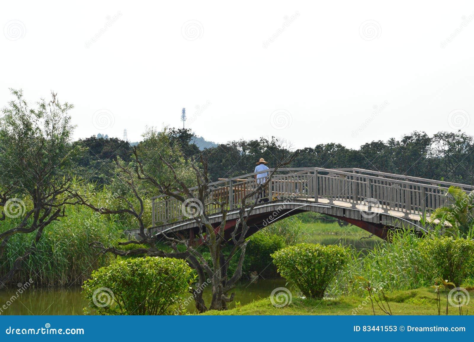 Puente chino est tico del jard n imagen de archivo for Chino el jardin