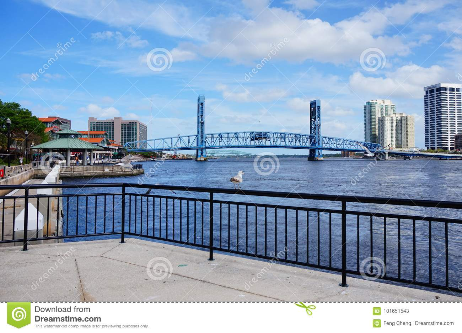 Puente de drenaje céntrico de Jacksonville