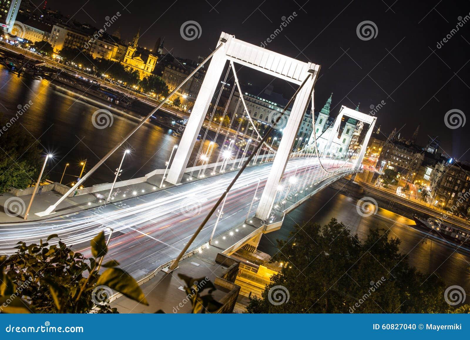 Puente de Elisabeth en Budapest en la noche
