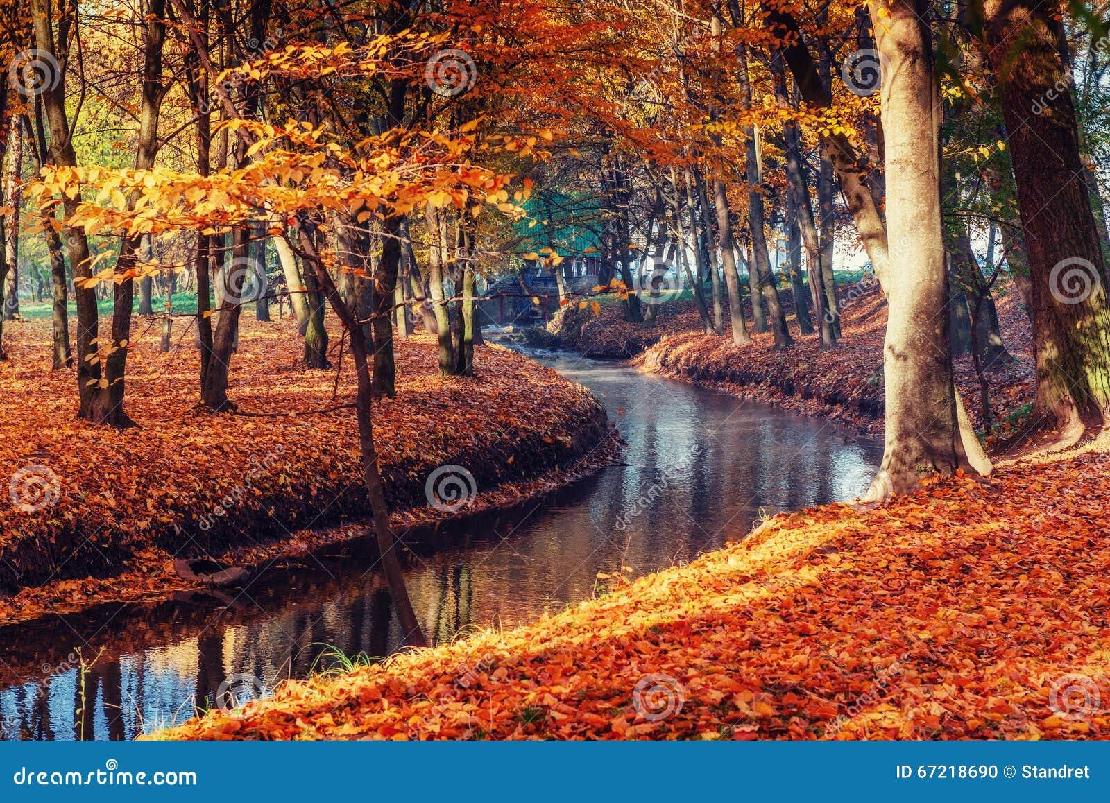 Puente de la manera del paseo sobre el río con los árboles coloridos en tiempo del otoño