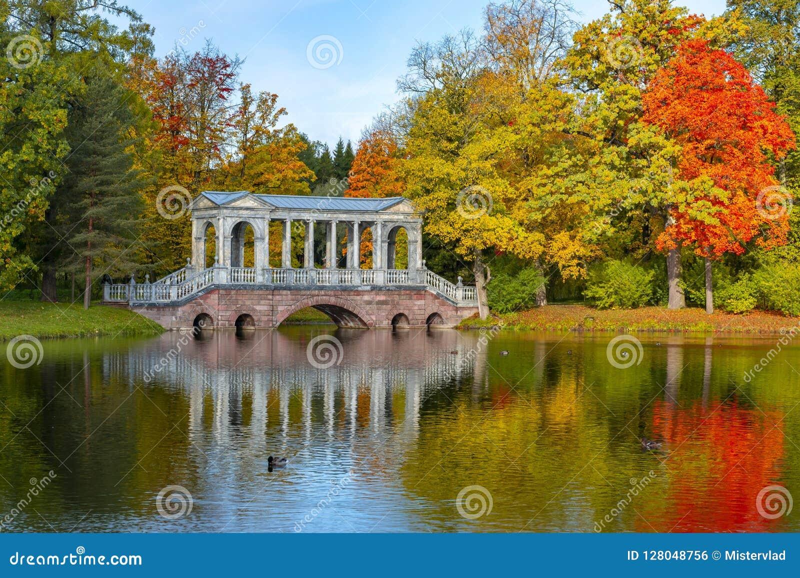 Puente de mármol en caída de oro del otoño suave en el parque de Catherine, Pushkin, St Petersburg, Rusia