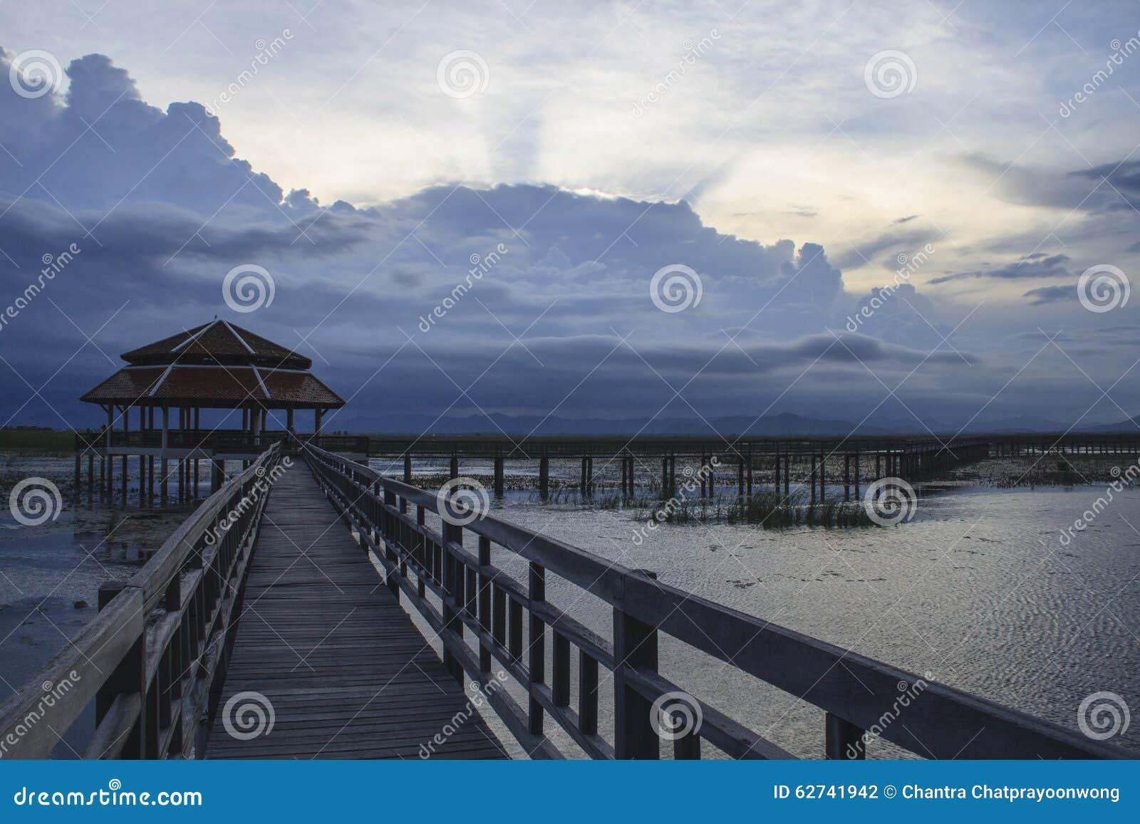Puente de madera en el lago del loto