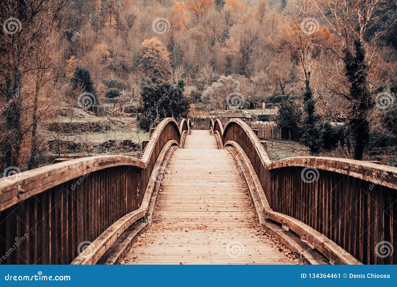 Puente de madera en un paisaje del otoño