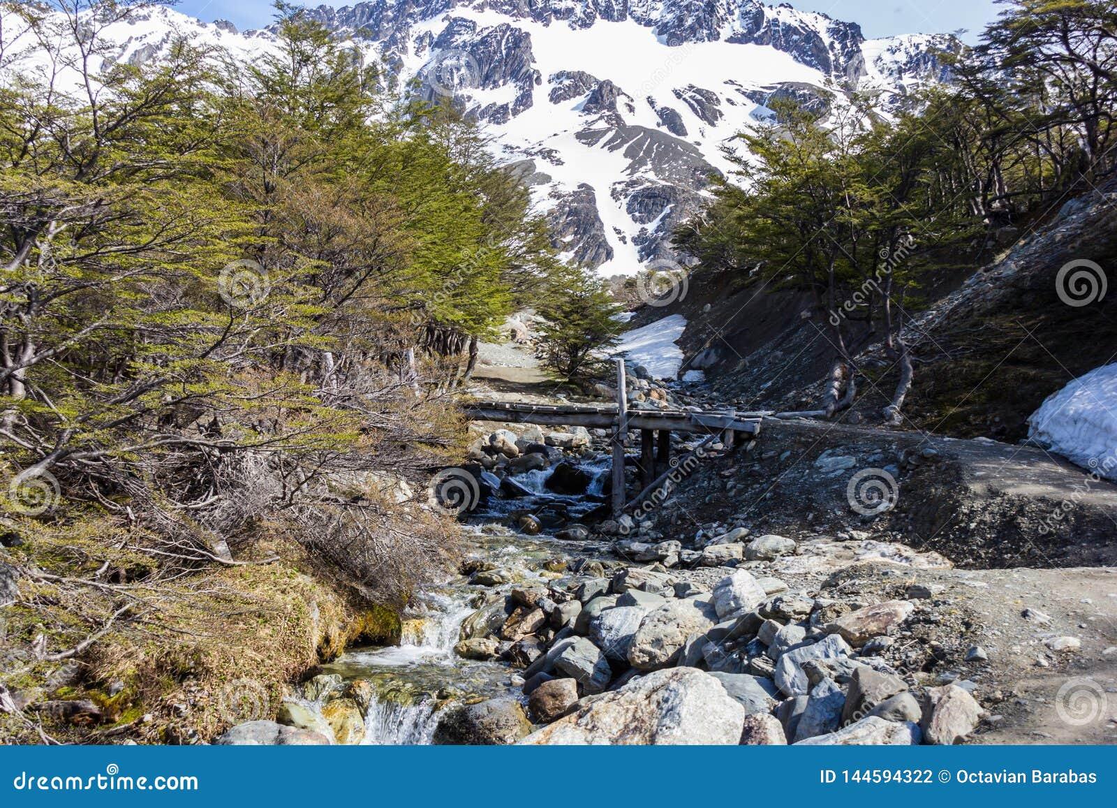 Puente de madera sobre el pequeño río en las montañas