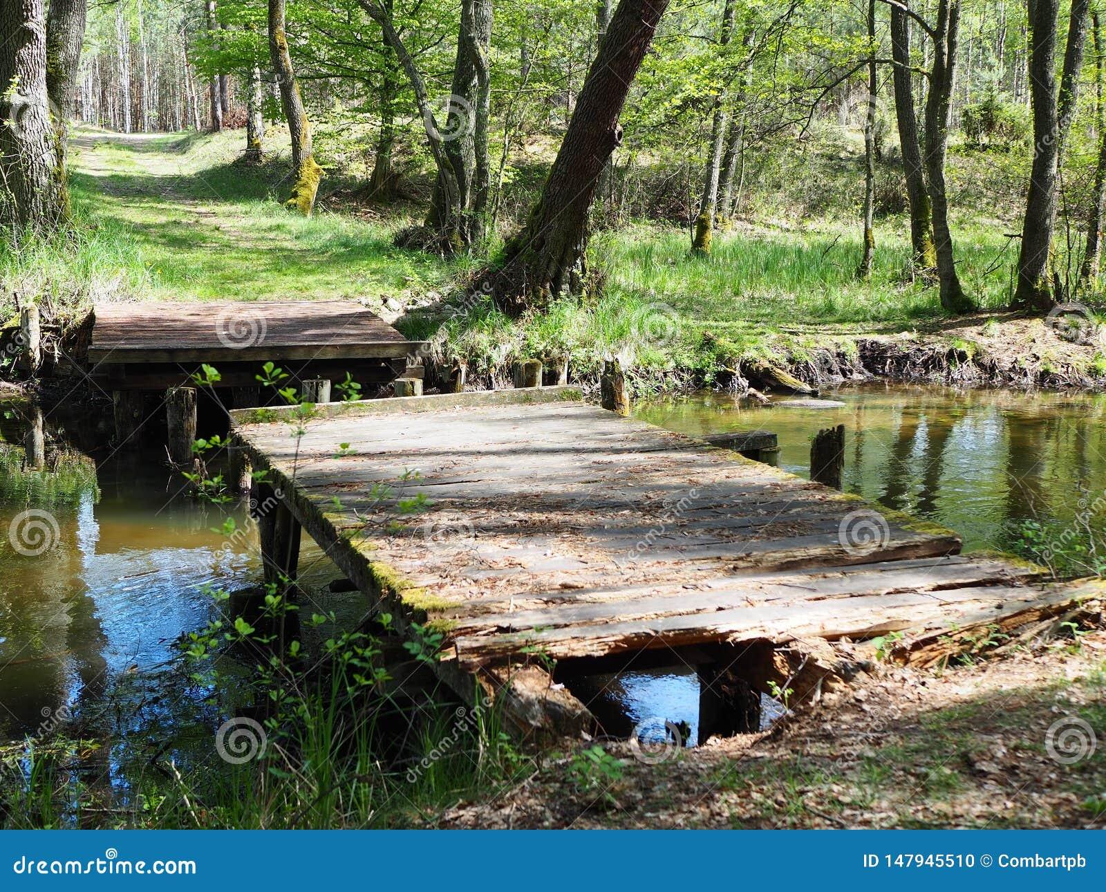 Puente de madera viejo con el agujero