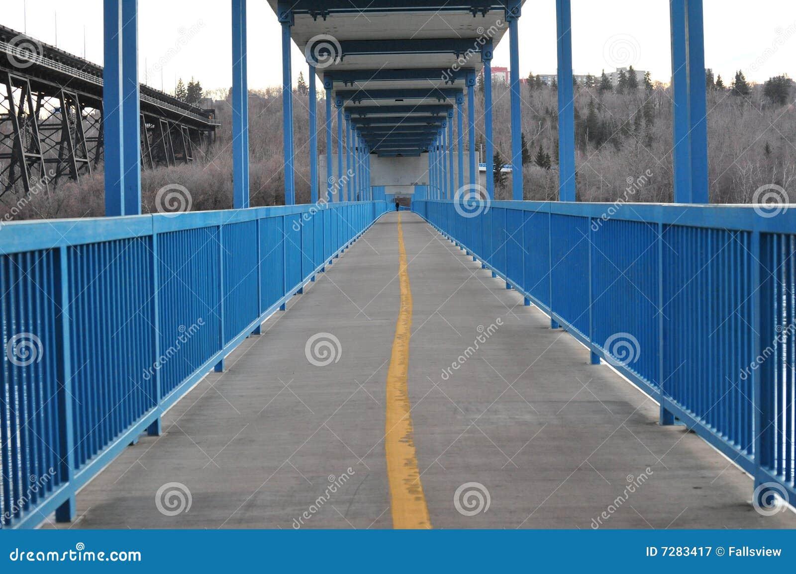 Puente del pie