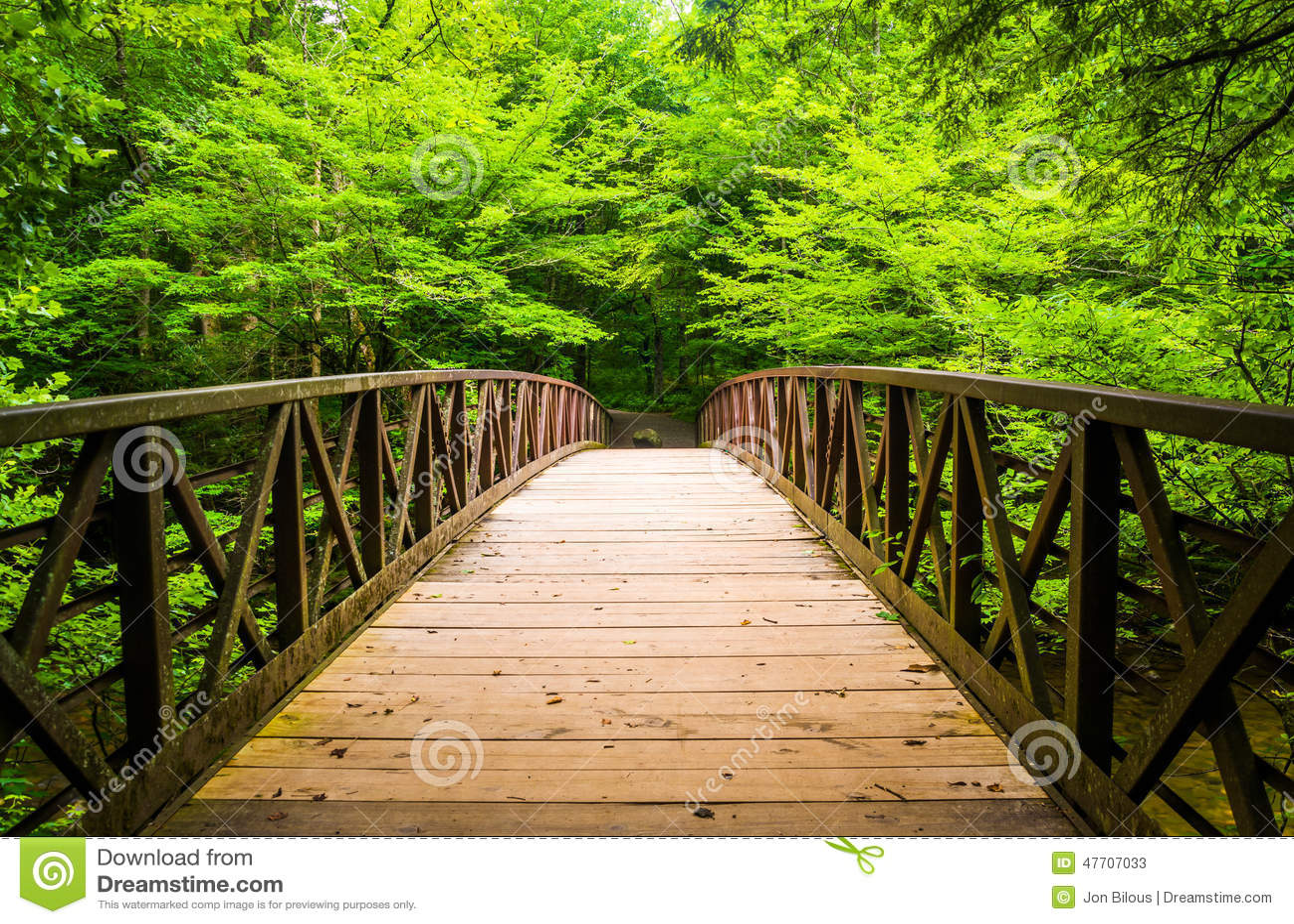 Puente que camina sobre una corriente, en el nacional de Great Smoky Mountains