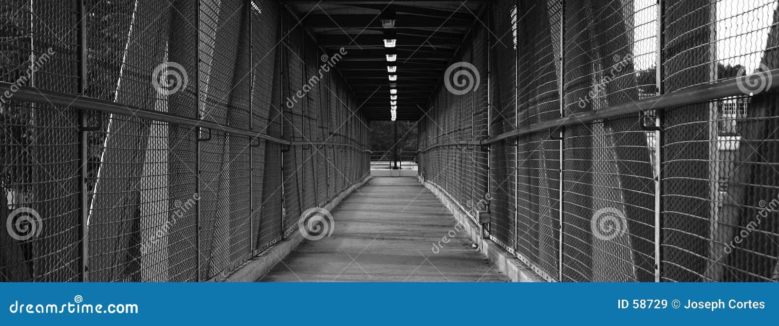Puente que recorre largo